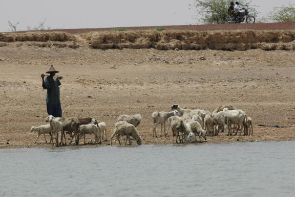 Ressource en eau & changement climatique
