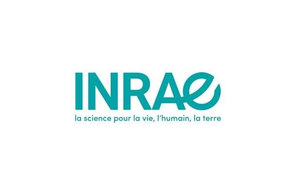 Offre de thèse INRAE - Approches de modélisation économiques pour la transformation des systèmes agricoles irrigués face aux changement globaux